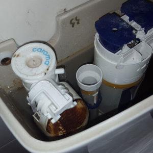 Bingham Plumbing & Gas - Leaking Cistern and Repairs